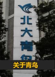 衡水北大青鸟软件学院面向全国招生招商