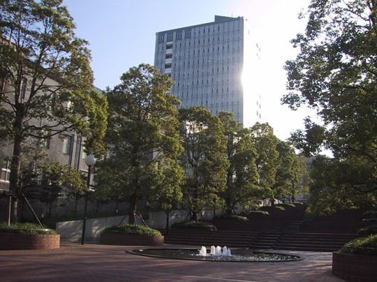 韩国东洋大学面向全国招教育代理