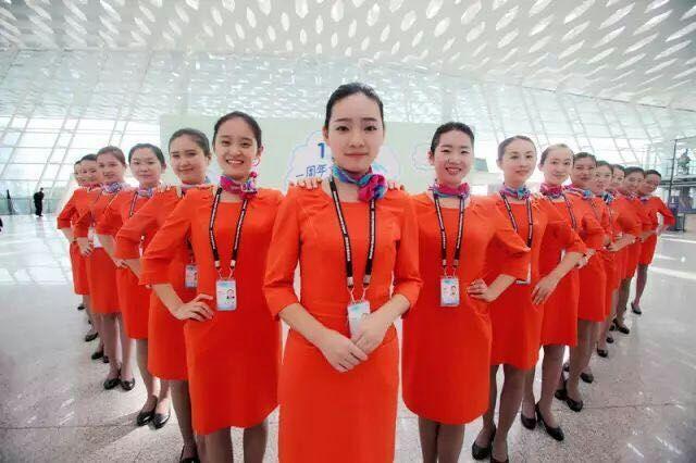 航空公司和机场包就业-最靠普的项目