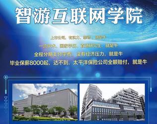 智游互联网学院