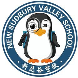 新瑟谷【雄安】国际学习中心面向全国招代理